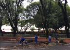 Após remoção de árvore, ônibus voltam a atender na Praça Dom Feliciano, no Centro Felipe Daroit / Agência RBS/Agência RBS