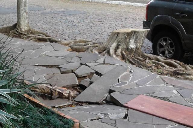 Moradores reclamam de calçada estragada e esgoto aberto na zona sul de Porto Alegre Alexandre Raymundo de Jesus/Arquivo pessoal
