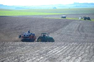 O que o produtor pode fazer para evitar ou reduzir perdas no plantio de trigo? Diogo Zanatta/Especial