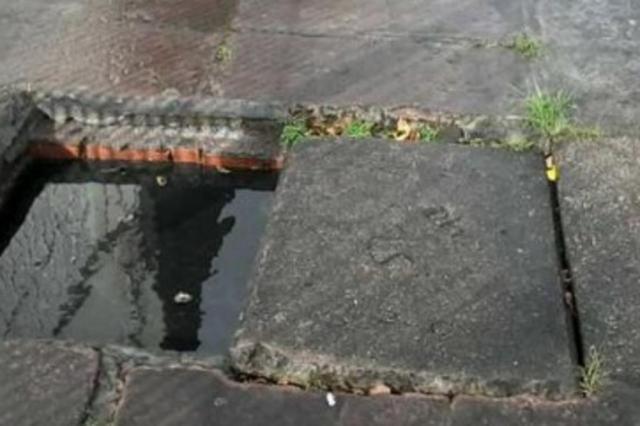 Moradores reclamam de mau cheiro e proliferação de mosquitos no Sarandi Pelas Ruas/Reprodução