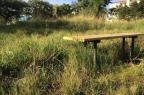 Pela falta de capina, moradores não conseguem frequentar praça no Humaitá Leandro Mendes/Arquivo pessoal