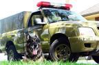 Escultura de cão policial em tamanho real será instalada em Caxias do Sul Brigada Militar/Divulgação