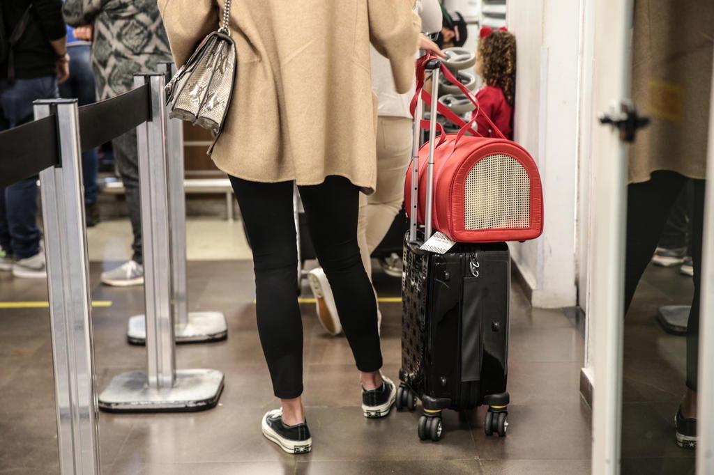 Procon fiscaliza cobrança de taxas de bagagem no aeroporto Salgado Filho