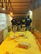 Mais de 1 tonelada de maconha é encontrada escondida em carga de milho no Oeste de SC Divulgação / Receita Federal / DIC / PRF / DEIC/Receita Federal / DIC / PRF / DEIC