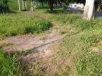 Moradores da Vila Ipiranga reclamam de falta de capina em praça Dilson Josende / Arquivo Pessoal/Arquivo Pessoal