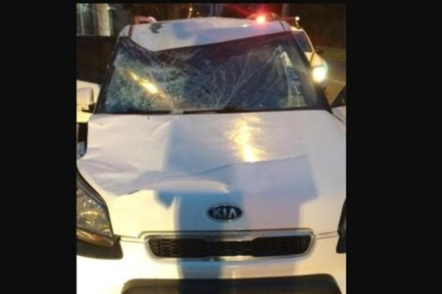 Embriagado, motorista atropela pedestre na Cidade Baixa, foge e é preso em flagrante Brigada Militar/Divulgação