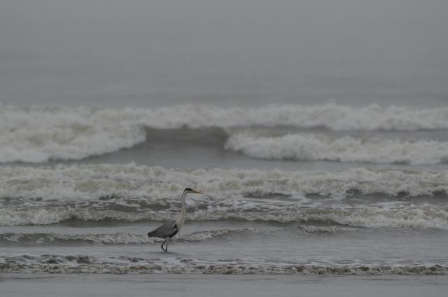 Defesa Civil do RS se mantém em alerta por conta da ressaca do mar /