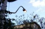 Luz acesa em postes durante o dia? Entenda por que isso ocorre em Porto Alegre Pelas Ruas/Reprodução