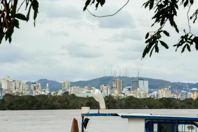 Os jeitos de ver o Guaíba: da ilha André Feltes/Especial